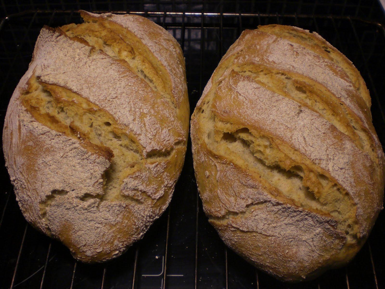 baka bröd rågmjöl